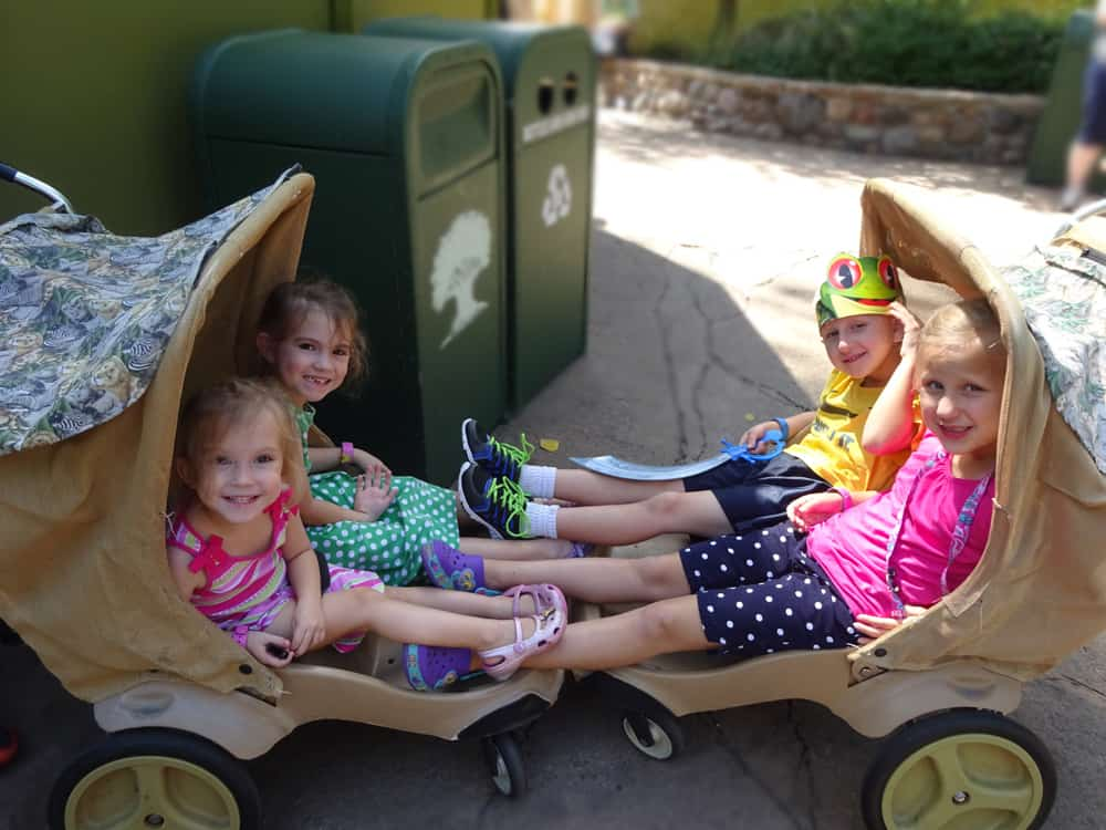 Comparing Stroller Options for your Disney World Vacation
